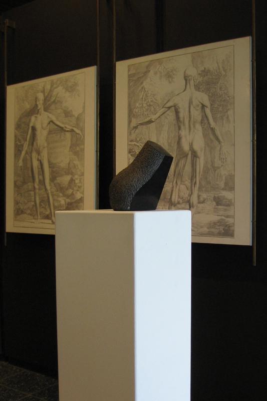 anatomisch museum - 2